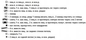 Палантин дорогая Алисия - Схема 2