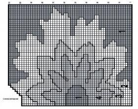Свитер реглан с цветочной интарсией - Схема 1